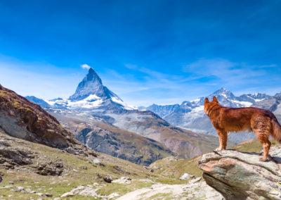 Zermatt & matterhorn (17)