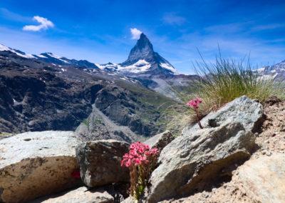 Zermatt & matterhorn (20)